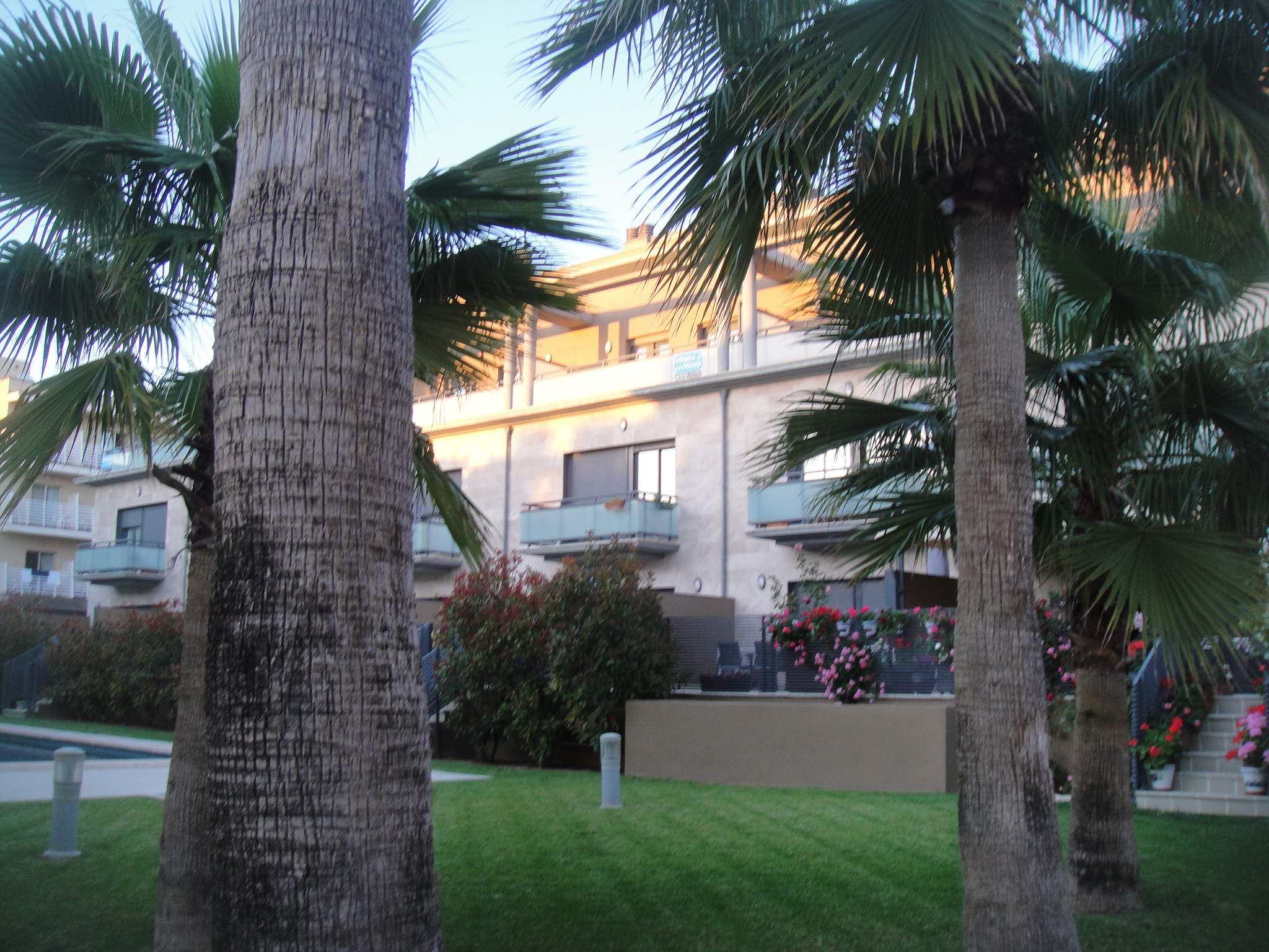 Wenn die Wohnanlage gepflegt ist, spricht das für die Wohnung auf Mallorca.