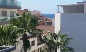 Mit Meerblick macht eine Wohnung auf Mallorca natürlich noch mehr Freude, ist aber auch teurer.