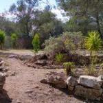 Das Grundstück ist die Grundlage für ein neues Haus Mallorca.